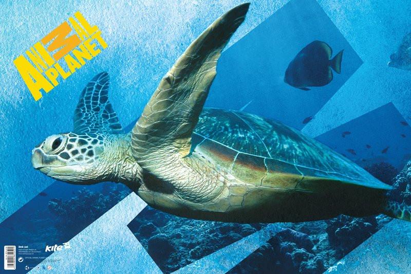 Подложка настольная (Animal Planet, Kite, 60x40 см, AP15-212K) - polosatiy.com.ua в Киеве