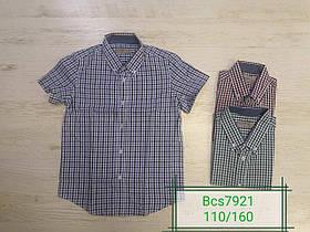 Рубашка для мальчиков оптом, Glo-story, размеры 110-160, арт. Bcs-7921