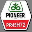 Семена ярого ріпаку ПІОНЕР PR45H72 (ПР45Г72