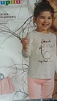 Комплект регланів для дівчаток,(2 шт в упаковці), розміри 98/104(3 набору), Lupilu, арт. Л-892