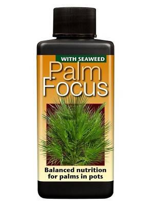 Удобрение для пальм Palm Focus 100 мл, фото 2