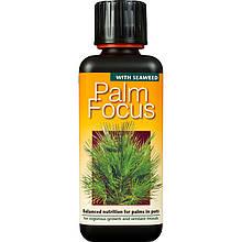 Удобрение для пальм Palm Focus 500 мл