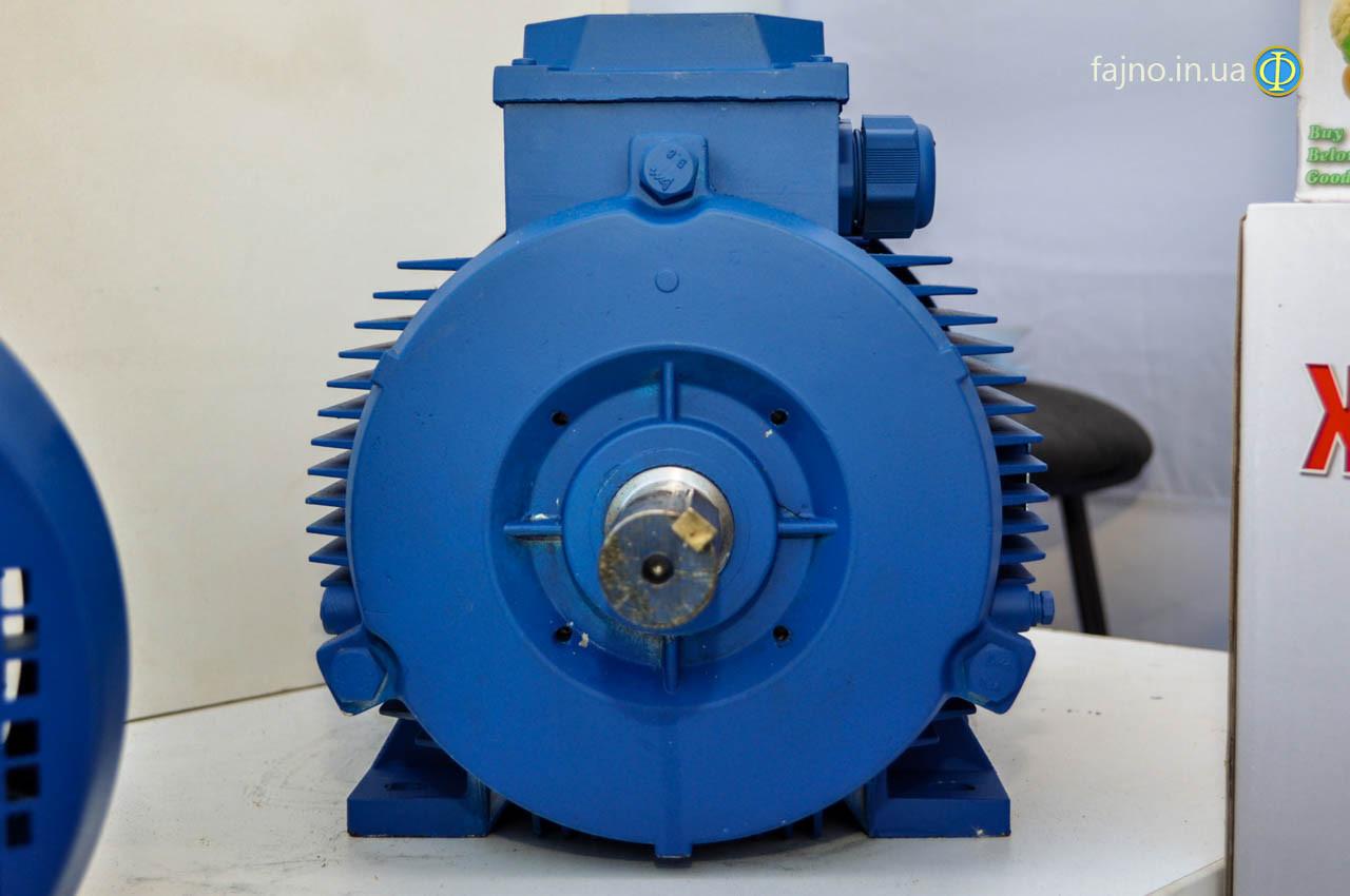 Электродвигатель Могилёв АИР 180 S2 (22 кВт, 3000 об/мин)