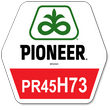 Семена ярого ріпаку ПІОНЕР PR45H73 (ПР45Г73)