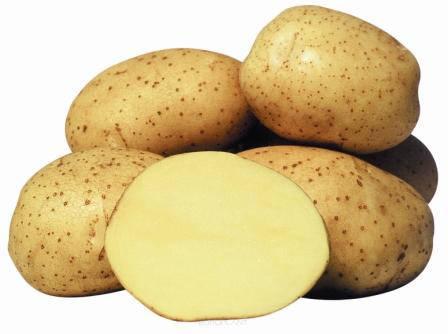 Картопля Вінета,3кг, фото 2