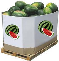 Октабин - Контейнер-дисплей для овощей и фруктов