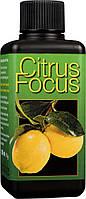 Citrus Focus удобрение для цитрусовых 300 мл