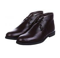 Чоловічі зимові черевики CG Desert Boots Winter Chocolate