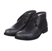 Чоловічі зимові черевики CG Desert Boots Winter Khaki Grey