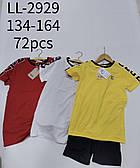 Комплект для хлопчиків Sincere, 134-164 рр. Артикул: LL2929