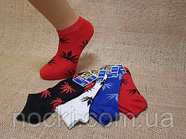 Мужские носки короткие с хлопка классика КЛ 41-45  ассорти листики 50 гладь