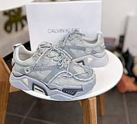 Женские кроссовки Calvin Klein Strike 205 Grey (кельвин кляйн, серые)