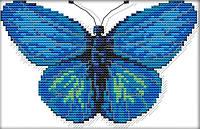 Набір для вишивання хрестом 25х18 Блакитна метелик Joy Sunday D515, фото 1