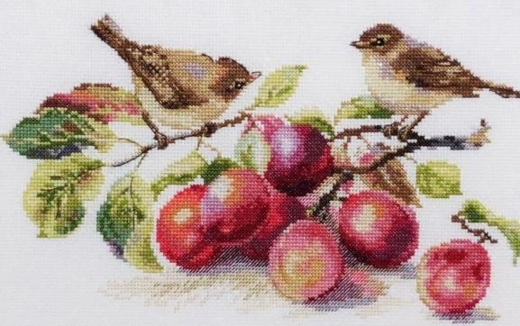 Набор для вышивания крестом 37х22 Пеночки и сливы Joy Sunday DA215