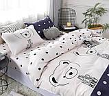 2-спальный комплект постельного белья скомпаньоном S420 сатин хлопок ТМ TAG, фото 2