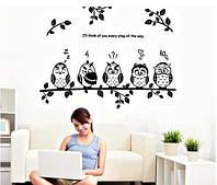 Декоративная виниловая наклейка стикер Совы на ветке (размер 95х75 см)