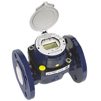 Турбинный счетчик Sensus Ду 65 холодной воды MeiStream RF с радиомодулем и счетным механизмом eRegis