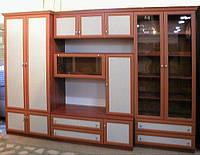 Изготовим шкаф в кабинет директора, руководителя