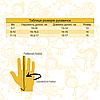 Водоотталкивающие детские (подростковые) лыжные перчатки, размер 15, бежевый, плащевка, флис, синтепон(517021), фото 3