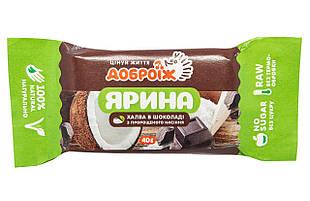 Жива халва «Ярина в шоколаді» , 40 г ТМ Доброїж