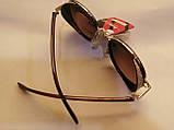Брендовые солнцезащитные, полароидные, женские очки, с боковинками, коричневая линза, фото 2