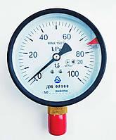 Манометр ДМ 05100 (до 100 КПа; кл. точності 1,5; М20х1,5).