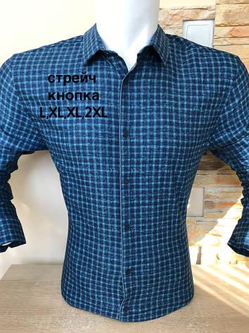 Сорочка Amato slim з довгим рукавом в клітку, фото 2