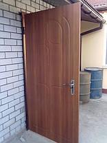 Двері вхідні для вулиці, фото 3