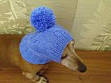Шапка для собаки,шапка для таксы,одежда для домашних животных, фото 8