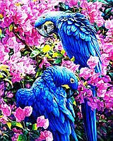 """Набор для рисования картин по номерам """"Пара попугаев"""""""