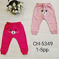 Спортивные штаны для девочек оптом, S&D, 1-5 лет,  № CH-5349