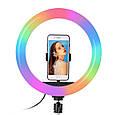 Кільцева світлодіодна лампа 26см RGB USB - для Селфі Блогера - з Тримачем для телефону (1005), фото 2