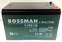 Акумуляторна батарея Bossman Master 12V 12Ah (6DZM12E)