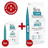 Brit Care Adult Salmon & Potato 12 кг+3кг корм собак дрібних і середніх порід (лосось)