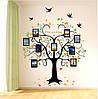 Интерьерная наклейка на стену - Дерево с фоторамками (205х160см)