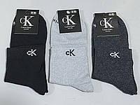 Носки CK оптом