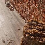 Вініловий підлогу Vinilam Click 511003 Дуб New Ulm, фото 2