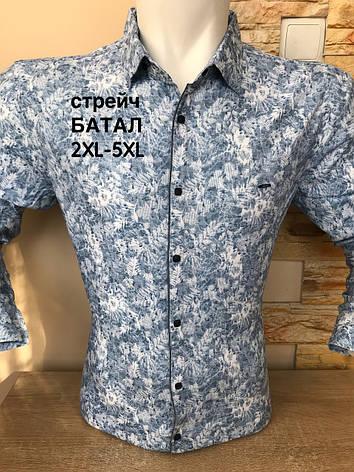 Батальна  сорочка довгий рукав Amato з принтом, фото 2