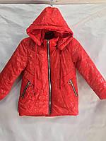 """Куртка дитяча демісезонна з принтом на дівчинку 4-8 років (4 цв) """"MUSTANG""""недорого від прямого постачальник"""