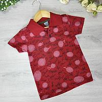 Детская футболка, трикотаж, для мальчика 8-12 лет (5 ед. в уп), Бордо