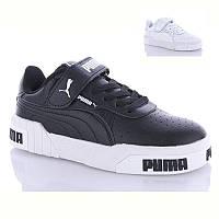 Модные кроссовки подростковые демисезонные Пума Размеры 34- 39 ( код 9806-00)