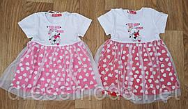 Платье для девочек Crossfire 12-36мес.