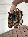 Стильные женские кроссовки ASH Leopard, фото 2