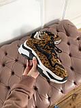Стильные женские кроссовки ASH Leopard, фото 4
