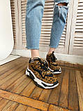 Стильные женские кроссовки ASH Leopard, фото 5