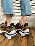 Стильные женские кроссовки ASH Leopard, фото 8