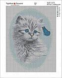 Алмазна вишивка, мозаїка Чарівний діамант Кошеня з метеликом КДІ-1075 30х40см 12цветов квадратні повна, фото 2