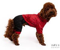 Дождевик комбинезон звезды красные для собак мелких, средних и крупных парод. Одежда для собак Люкс качаство