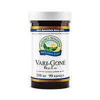 Vari - Gone NSP, Вері - Гон НСП, США