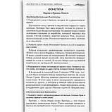 Диктанты Русский язык 5-11 классы Авт: Бойко Л. Изд: Торсінг, фото 4
